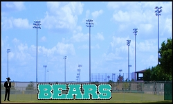 4.5' Bold Bears Letters - 3 Colors