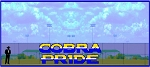 8' x 24' Stacked Cobra Pride Letters