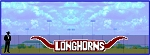 5' x 26' Longhorn Letters in Horns